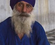 Sikh in blue